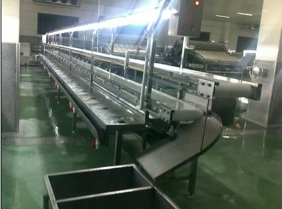food_processing_equipment_2